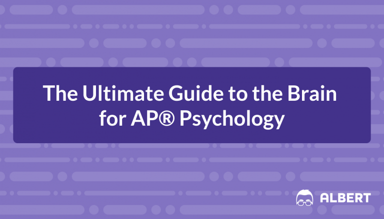 The Ultimate Guide to the Brain for AP® Psychology